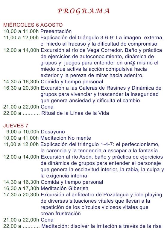2014 EL ENEAGRAMA 6-10 AGOSTO 4