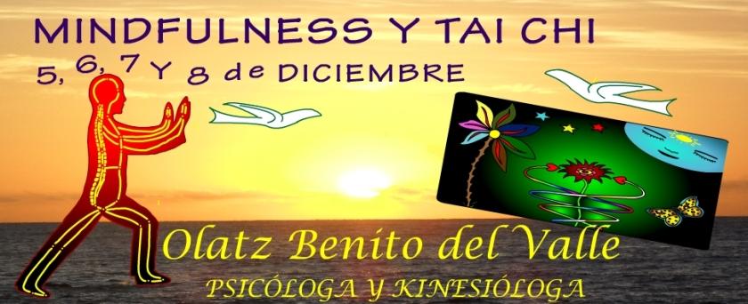 2015 MINDFULNESS Y TAI CHI DICIEMBRE